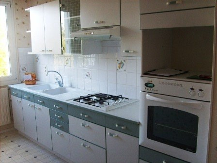 Rental apartment Champforgeuil 590€ CC - Picture 1
