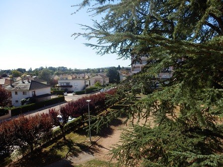 Vente appartement Chatenoy le royal 69 000€ - Photo 5