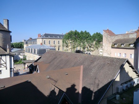 Location appartement Chalon sur saone 395€ CC - Photo 6