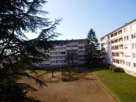 Vente appartement Chatenoy le royal 49 900€ - Photo 5