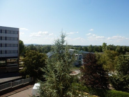 Vente appartement Chalon sur saone 36 000€ - Photo 6