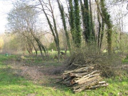 Vente terrain Boissy la riviere 80000€ - Photo 3