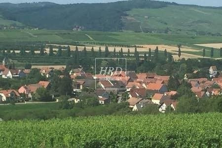 Rental house / villa Traenheim 950€ CC - Picture 13
