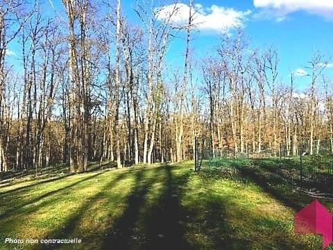 Vente maison / villa Montrabe 352900€ - Photo 3