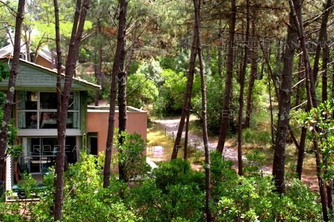 Location vacances maison / villa Lacanau-ocean 330€ - Photo 9