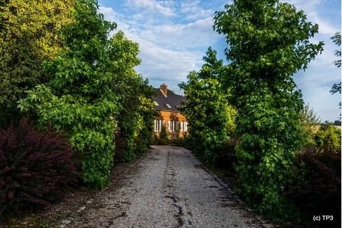 Vente maison / villa Auffay 399000€ - Photo 4