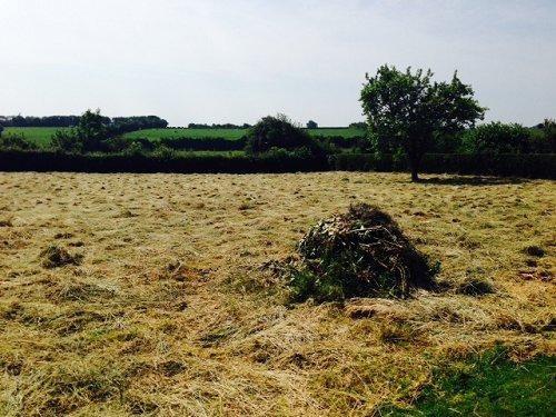 Verkoop  stukken grond Aumale 26000€ - Foto 1