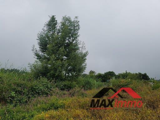 Vente terrain La plaine des cafres 82500€ - Photo 3