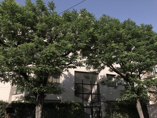 Vente appartement Le raincy 307000€ - Photo 1