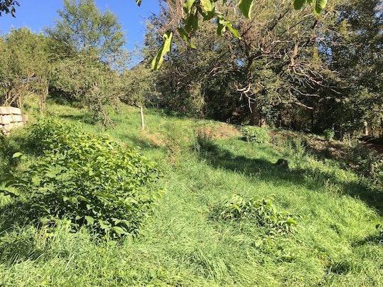 Vente terrain Saint-victor-sur-loire 79000€ - Photo 3