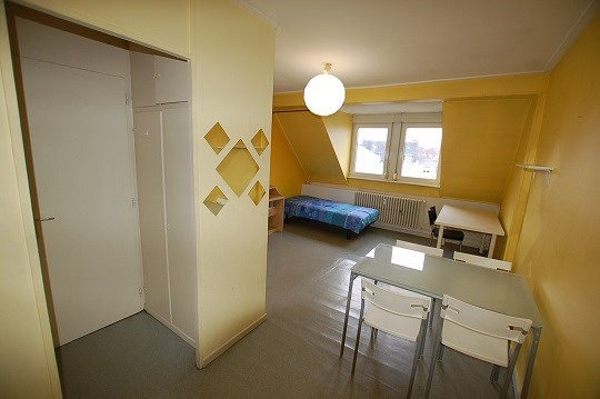 Rental apartment Strasbourg 445€ CC - Picture 1