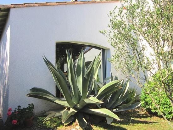 Deluxe sale house / villa Saint palais sur mer 572000€ - Picture 8