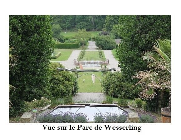 boutique Husseren wesserling 64900€ - Fotografie 8