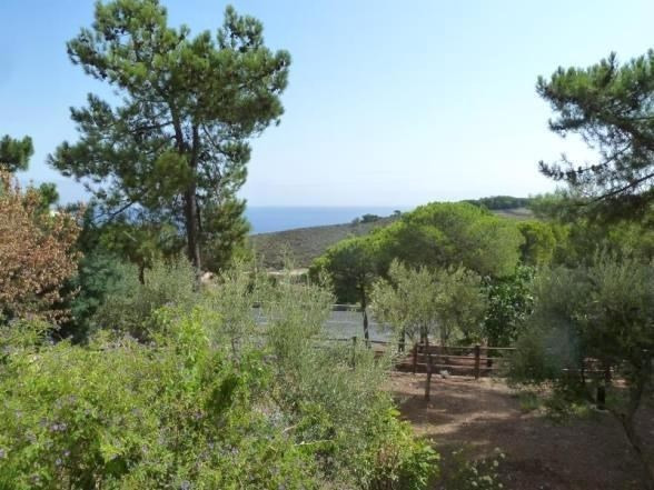 Vente appartement Banyuls sur mer 132 000€ - Photo 2
