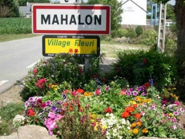 Vente terrain Mahalon 19980€ - Photo 1
