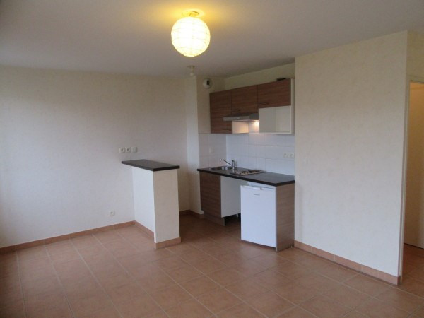 Rental apartment La salvetat st gilles 497€ CC - Picture 3