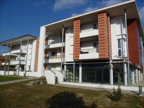 Location appartement Salvetat saint gilles 476€ CC - Photo 1