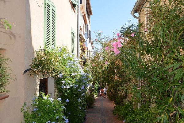 Rental apartment Antibes 750€ CC - Picture 7