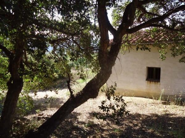 Verkoop  stukken grond Ceret 38500€ - Foto 4