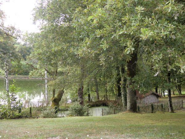 Vente maison / villa Peyrilhac 545000€ - Photo 13