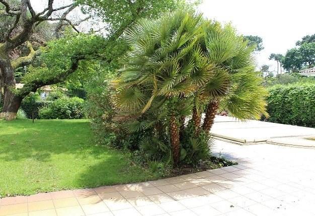 Deluxe sale house / villa Arcachon 1350000€ - Picture 3