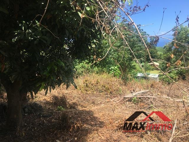 Terrain a bâtir le guillaume - 700 m²