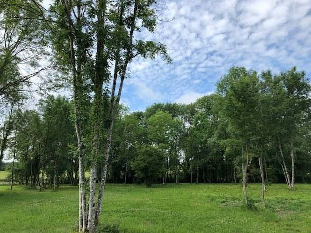 Vente terrain St jean de bonneval 118 000€ - Photo 1