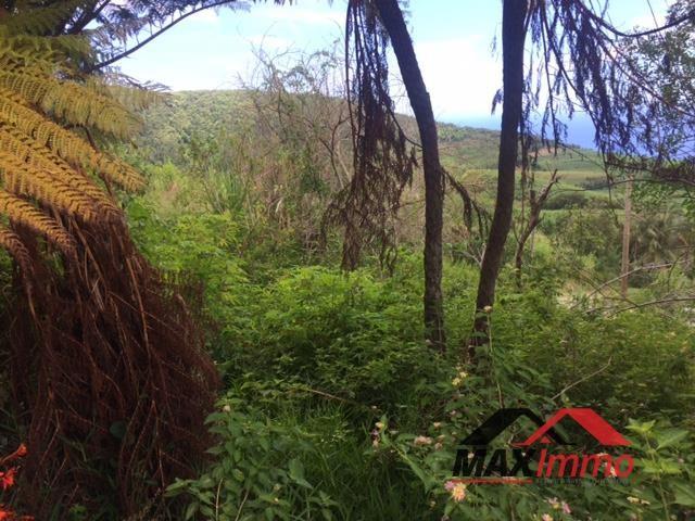 Vente terrain Saint joseph 75000€ - Photo 2