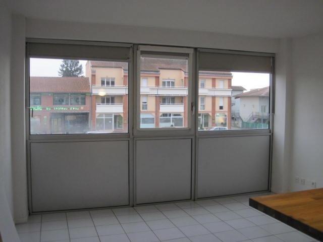 Location appartement Aucamville 356€ CC - Photo 1