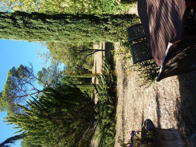 Viager maison / villa Besse-sur-issole 400000€ - Photo 12