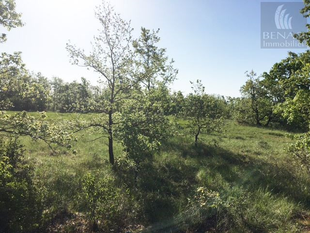 Vendita terreno Andillac 55000€ - Fotografia 3