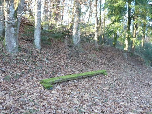 Vente terrain Limoges 19950€ - Photo 3