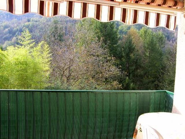 Location vacances appartement Prats de mollo la preste 520€ - Photo 8