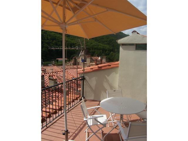 Location vacances appartement Prats de mollo la preste 900€ - Photo 4