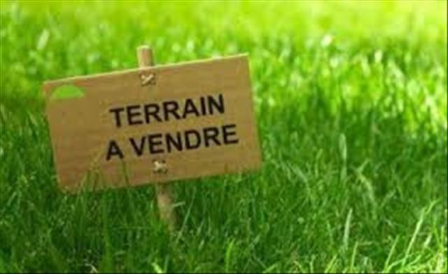 Vente terrain Vineuil 45 998€ - Photo 1