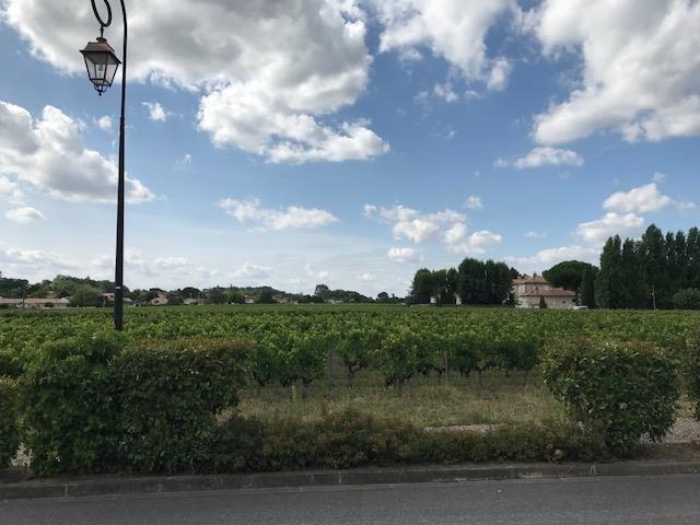 Vente maison / villa St andre de cubzac 173200€ - Photo 10