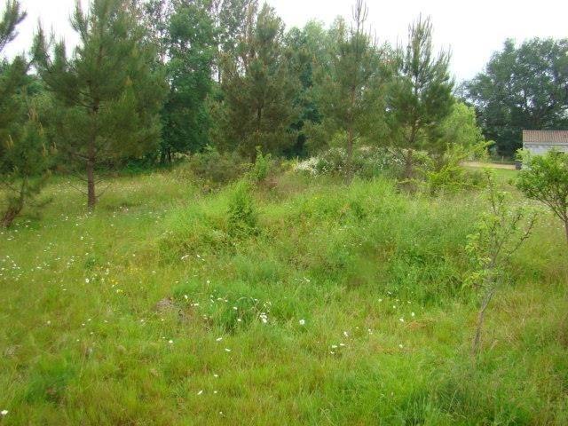 Verkoop  stukken grond Montpon menesterol 28000€ - Foto 2