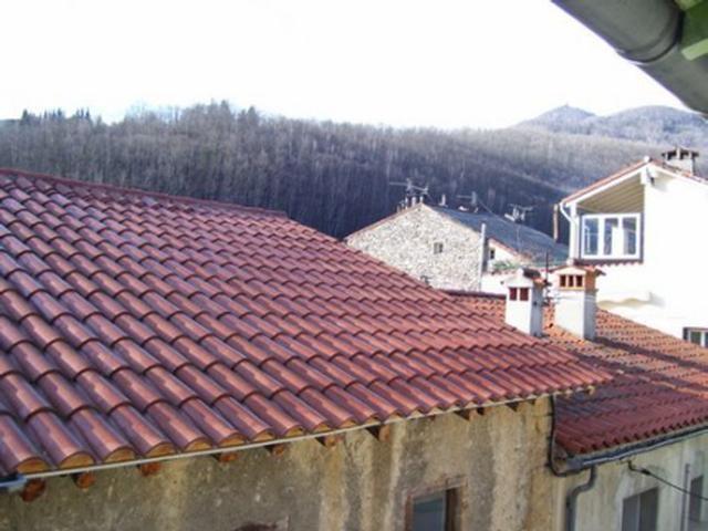 Location vacances maison / villa Prats de mollo la preste 520€ - Photo 7