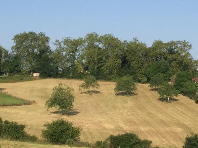 Vente terrain Thenon 65400€ - Photo 1