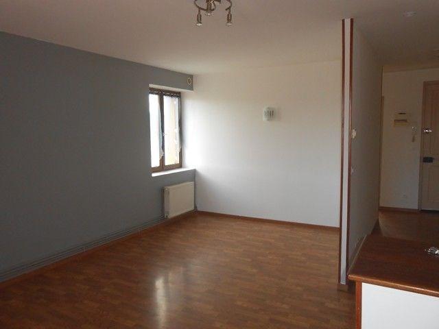 Locação apartamento Roche-la-moliere 435€ CC - Fotografia 8