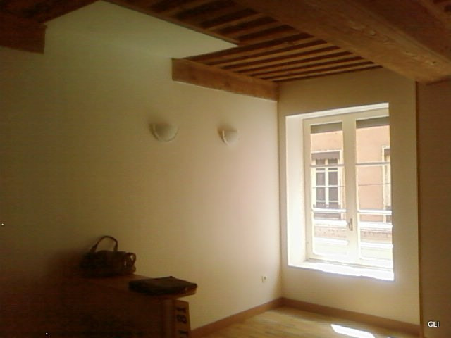 Rental apartment Lyon 1er 486€ CC - Picture 5