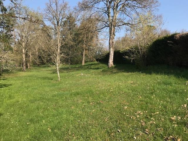 Vente terrain Brinon sur sauldre 50000€ - Photo 5