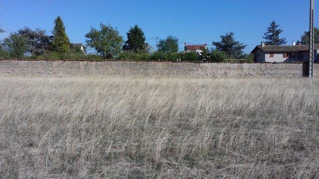 Sale site Sainte-agathe-la-bouteresse 61375€ - Picture 3