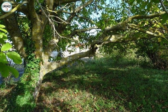 Vente terrain Mortagne-sur-gironde 55 000€ - Photo 2