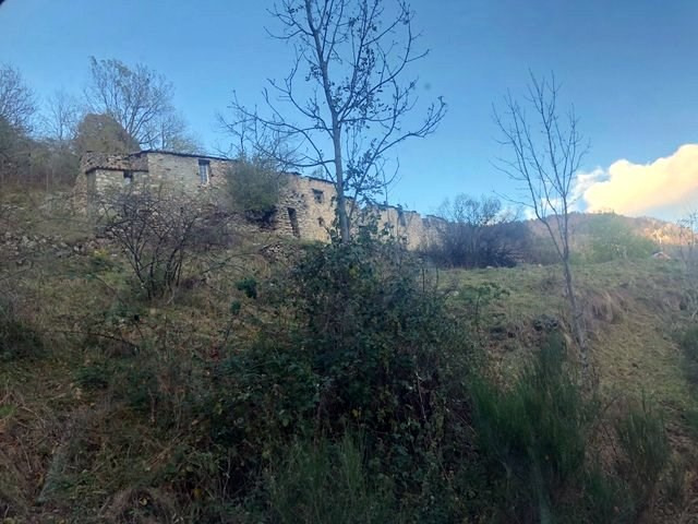 Vente maison / villa Prats de mollo la preste 165000€ - Photo 2