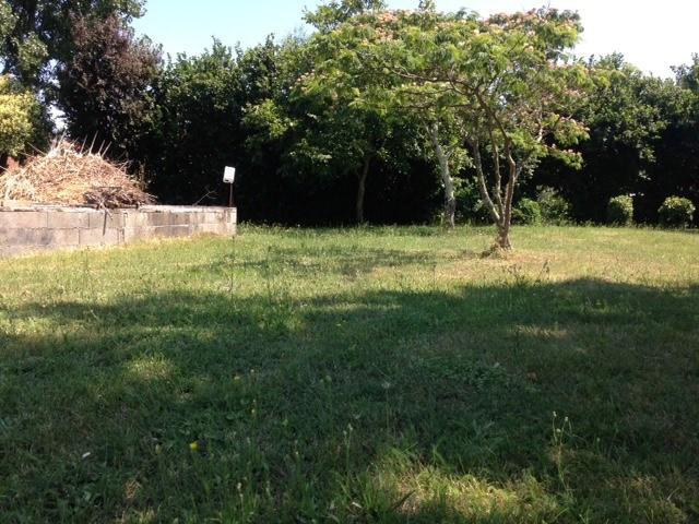 Vente terrain Pinsaguel 158000€ - Photo 2