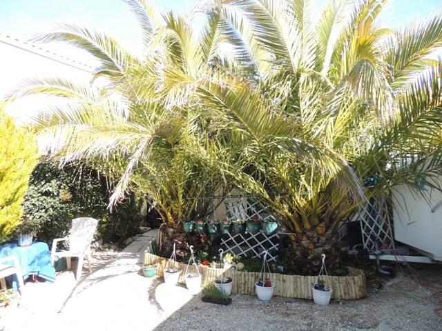 Location vacances maison / villa Vaux sur mer 390€ - Photo 4