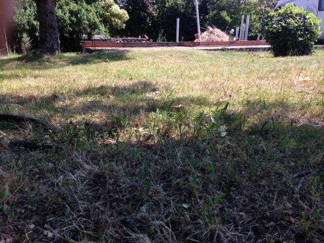 Vente terrain Pinsaguel 158000€ - Photo 1