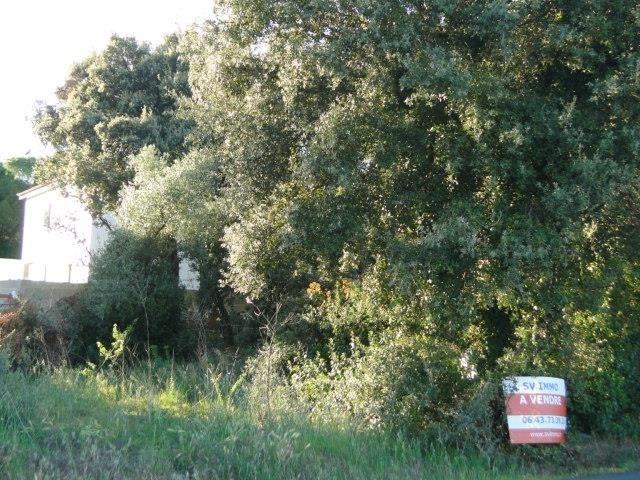Venta  terreno Cournonsec 180000€ - Fotografía 6