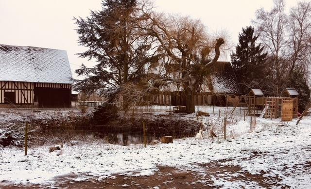Sale house / villa Conches en ouche 305000€ - Picture 20